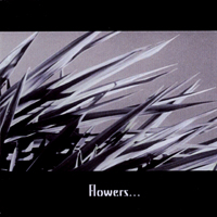 FLOWERS & BARRICADES (3inch-EP 2006) le petit machiniste